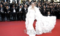 Cannes Film Festival 2017 begins