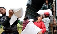 Предоставлены две тыс. тонн риса жителям в затоленных районах в Биньдинь