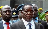 Инаугурация нового президента Зимбабве намечена на 24 ноября