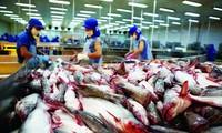 Exploiter les nappes phréatiques pour le développement durable de l'aquaculture