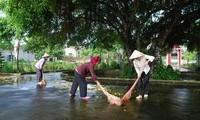 Histoire de trois femmes de soldats morts pour la Patrie à Y Yên, Nam Dinh