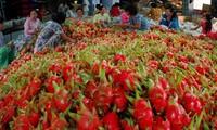 La Chine se tient prête à ouvrir son marché aux produits agricoles vietnamiens
