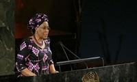 Le Nigeria assume la présidence du Conseil de sécurité de l'ONU