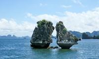 Coopération touristique entre le Vietnam et les pays membres de l'ACMES