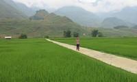 Đông Hà, la première commune néo-rurale de Hà Giang