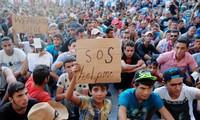 L'Europe s'affronte sur les quotas, nouveaux records de migrants