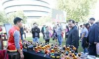 Vu Van Ninh inaugure la fête de découverte du Vietnam 2015 au Royaume Uni