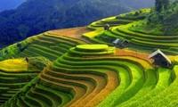 Semaine culturelle et touristique des rizières en terrasses de Mù Cang Chai 2015