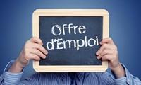 Enseignement supérieur et emplois : la France attractive