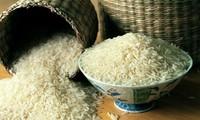 Les Vietnamiens mangent-ils beaucoup de riz?