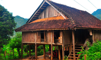 Les maisons traditionnelles vietnamiennes