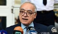 PBB gagal dalam memecahkan perselisihan antara-kubu di Libia