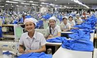 墨西哥代表团考察越南纺织品服装行业