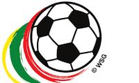 越南足球队启程参加2016年铃木杯东南亚足球锦标赛