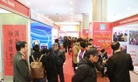 越南全国各地举行2017丁酉春节特刊展