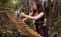 西原地区各族同胞的传统乐器——特龙琴