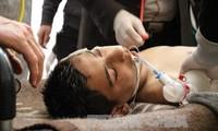 叙利亚军方愿意停火 调查化武袭击