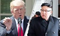 美国总统特朗普不排除会见朝鲜领导人金正恩的可能
