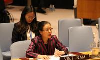 越南主动积极参与联合国维和行动