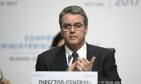 世贸组织第11届部长级会议未能发表联合声明