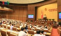 越南国会通过2019年国会监督计划决议