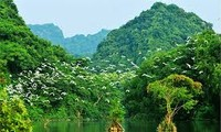 Tourisme: Leçon 9: Voyage à Ninh Binh - Deuxième partie