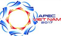 L'APEC 2017 rehausse la position politique du Vietnam