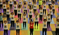 """Yoga for a healthy life"" introduced to Hanoians"