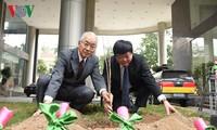 Kairinjuku University presents 100 sakura trees to VOV