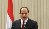 Egypt pledges continued efforts to end Syria crisis