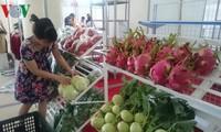 越南蔬果出口额约达10亿美元