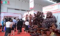 推动越南向欧盟合法出口木制品