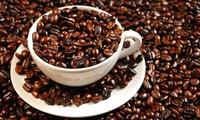 越南咖啡和胡椒价格下跌