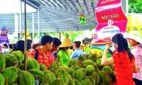 2017年朔庄省水乡水果节举行