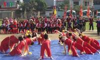 第三次国际瑜伽日将在越南9个省市举行