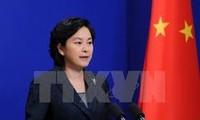 """中国愿在克服台风""""达维""""造成的影响方面向越南提供帮助"""
