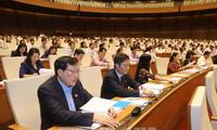 越南国会表决通过《林业法》