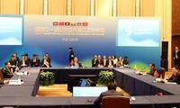 越南政府副总理兼外长范平明出席澜沧江-湄公河合作第三次外长会