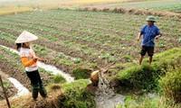Vietnam bemüht sich um eine schnelle und nachhaltige Armutsminderung