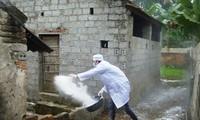 Verstärkte Einführung der Maßnahmen gegen Vogelgrippe