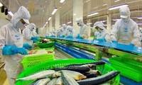 Die USA sind der größte Importeur vietnamesischer Meeresfrüchte