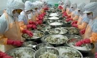 VASEP klagt gegen Antidumpingzölle für Garnelen aus Vietnam