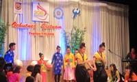 Vorstellung der vietnamesischen Kultur in Tschechien