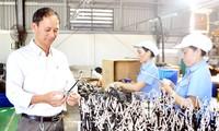 Dong Nai - Vorbild in der Anwerbung ausländischer Investitionen