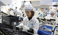 Exportvolumen Vietnams nach Mexiko steigt stark