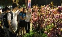 Eröffnung des Sakura-Festes in Ho Chi Minh Stadt