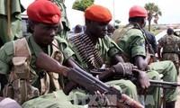 Weltsicherheitsrat ruft die Nachbarländer Südsudans auf, sich für den Stopp der Gefechte in Juba