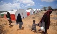 UNO empfiehlt zehn Maßnahmen zur Lösung der Ungleichheit