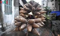 """Gemeinde Thủ Sỹ in Hung Yen, die seit mehr als 200 Jahren das """"Do"""" flechtet"""