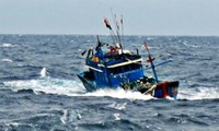 Đại biểu Quốc hội lên án việc tàu Trung Quốc đâm chìm tàu cá của ngư dân Việt Nam